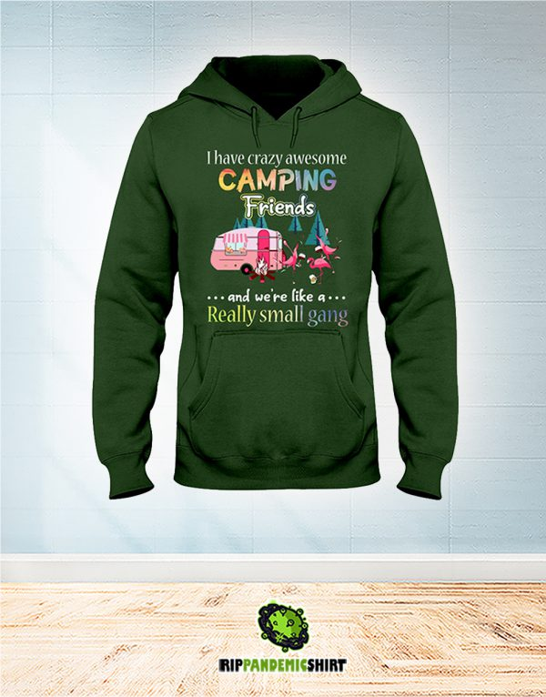 Flamingo I Have Crazy Awesome Camping Friends And We're Like A Really Small Gang hoodie