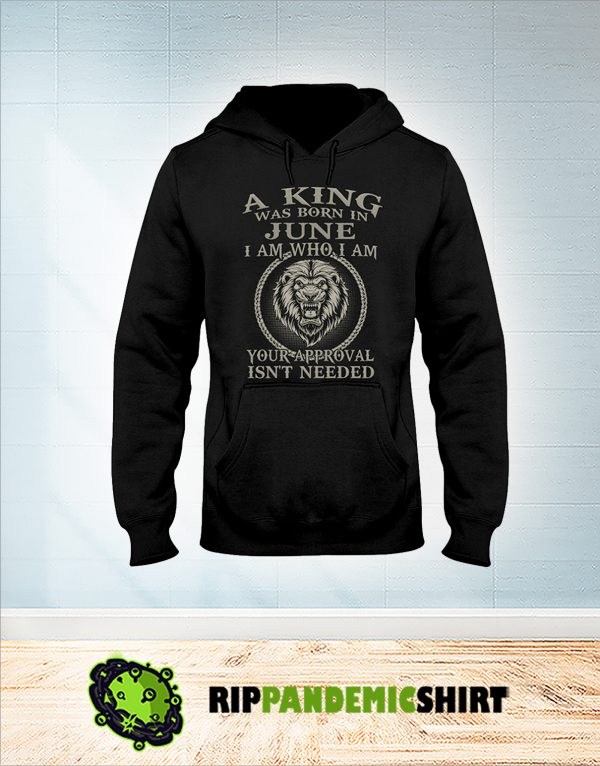 Lion A king was born in june I am who I am hoodie