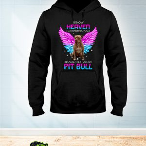PitBull I Know Heaven is a beautiful place hoodie