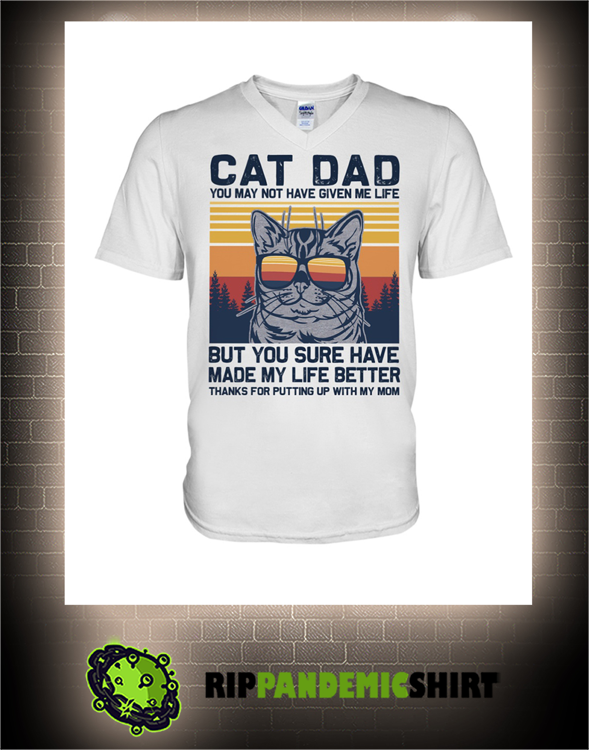 Vintage Cat dad you may not have given me life v-neck